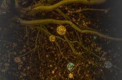 Красивые украшенные ветви рождественской елки со светя шариками в Мюнхене иллюстрация вектора