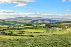 Красивые участки земли Йоркшира благоустраивают сногсшибательный зеленый цвет Rolling Hills Европу Великобритании туризма Англии  Стоковая Фотография