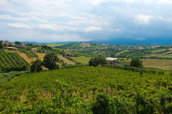 Красивые холмы в провинции Терамо стоковые фото
