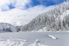 Красивые холмы taiga на Дальнем востоке России в в начале октября Taiga в зиме красивейшая природа Морозная погода Стоковые Изображения
