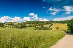 Красивые цвета весны Bibbiena в Тоскане Стоковая Фотография