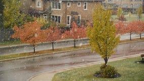 Красивые цвета осени с снегом понижаются в Калгари, Канаду сток-видео