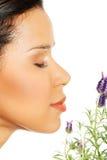 Красивые цветки лаванды запаха девушки Стоковые Изображения