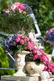 Красивые цветки в вазе в саде Стоковая Фотография