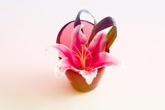 Красивые цветки в вазе с Стоковые Изображения RF