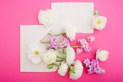 Красивые цветки и бумажные карточки на розовой предпосылке Плоское положение, взгляд сверху Флористическая концепция для блога we Стоковое фото RF
