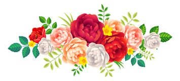 Красивые цветки и листья пиона vector элемент украшения флористический на белой предпосылке Стоковые Фотографии RF