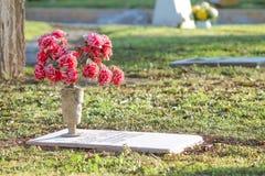 Красивые цветки и памяти Стоковые Фотографии RF