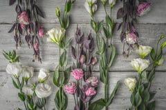 Красивые цветки на белой деревянной предпосылке Стоковые Изображения
