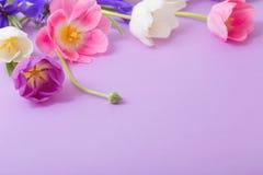 Красивые цветки на бумажной предпосылке стоковое изображение