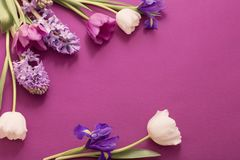 Красивые цветки на бумажной предпосылке стоковая фотография rf