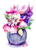 Красивые цветки пиона Стоковое Изображение