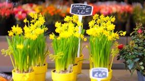 Красивые цветки проданные на внешнем цветочном магазине Стоковая Фотография RF