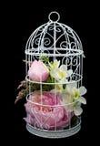 Красивые цветки сирени в декоративной клетке Стоковые Изображения