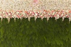 Красивые цветки с зеленым папоротником выходят предпосылка Beautif стены Стоковые Изображения RF