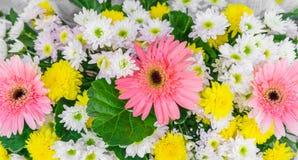 Красивые цветки для валентинок и сцены свадьбы Стоковые Изображения