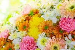 Красивые цветки для валентинок и сцены свадьбы Стоковые Фото