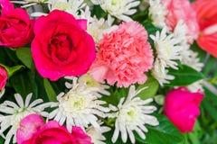 Красивые цветки для валентинок и сцены свадьбы Стоковые Фотографии RF