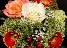 Красивые цветки 4 Стоковое Изображение RF