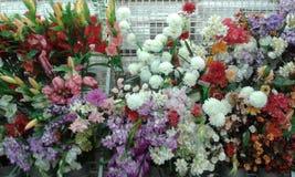 Красивые цветки Стоковое Изображение