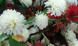 Красивые цветки Стоковое фото RF