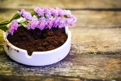 Красивые цветок и кофейная гуща на винтажной деревянной предпосылке Стоковое Изображение