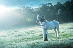 Красивые чувственные женщины с белой лошадью Стоковая Фотография