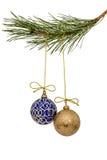 Красивые шарики рождества вися на ветви сосны, изоляте Стоковые Изображения