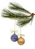 Красивые шарики рождества вися на ветви сосны, изоляте Стоковое Изображение RF