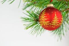 Красивые шарики рождества на белой предпосылке Стоковые Фотографии RF