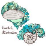 Красивые эскизы seashell для вашего дизайна Стоковая Фотография