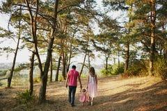 Красивые люди семьи из трех человек, папа мамы и дочь стоковые фотографии rf