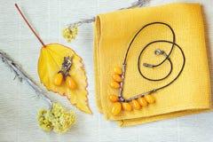 Красивые янтарные ожерелье и серьги Аксессуары ювелирных изделий Стоковые Фото