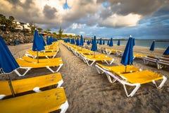 Красивые loungers солнца с парасолями на пляже Стоковые Изображения RF