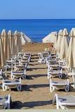 Красивые loungers солнца Стоковые Изображения RF