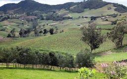 Красивые montain и ландшафт Стоковые Изображения RF