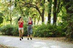 Красивые sporty женщины jogging Стоковые Изображения