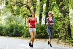 Красивые sporty женщины jogging Стоковое фото RF
