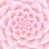 Красивый абстрактный розовый цветок Стоковая Фотография RF