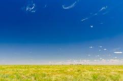 Красивый австралийский луг Стоковые Фото