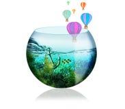 Красивый аквариум с рыбами, водорослями, анкером и воздушными шарами на a Стоковая Фотография