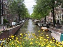 Красивый Амстердам Стоковые Изображения RF