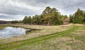 Красивый ландшафт весны с путем грязи на луге Стоковые Фотографии RF