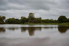 Красивый ландшафт в северном Pantanal Стоковые Изображения RF