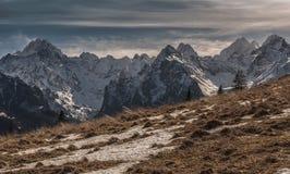Красивый ландшафт горы с волнистыми травами Стоковая Фотография RF