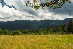 Красивый ландшафт гор в прикарпатском небо утеса панорамы гор озера красивейшего голубого brebeneskul прикарпатское высокое вверх Стоковое фото RF