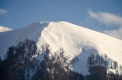 Красивый ландшафт гор Кавказа снежной зимы больших Солнечная погода, деревья заволакивает поля природы Азербайджана Стоковая Фотография RF