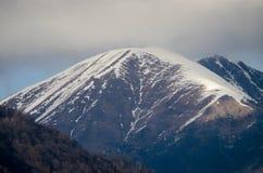 Красивый ландшафт гор Кавказа снежной зимы больших Солнечная погода, деревья заволакивает поля природы Азербайджана Стоковое Изображение