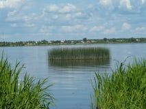 Красивый ландшафт лета озера Стоковые Изображения