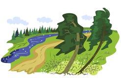Красивый ландшафт лета с рекой Стоковые Изображения